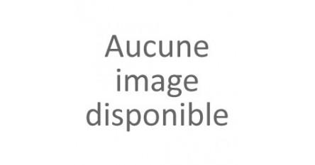 Herbes du Grand Saint Bernard